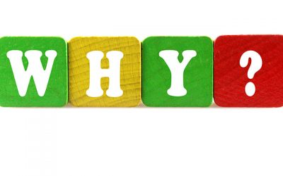 Lessons from a Two-Year-Old: Ask Why